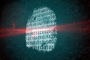 fingerprint290
