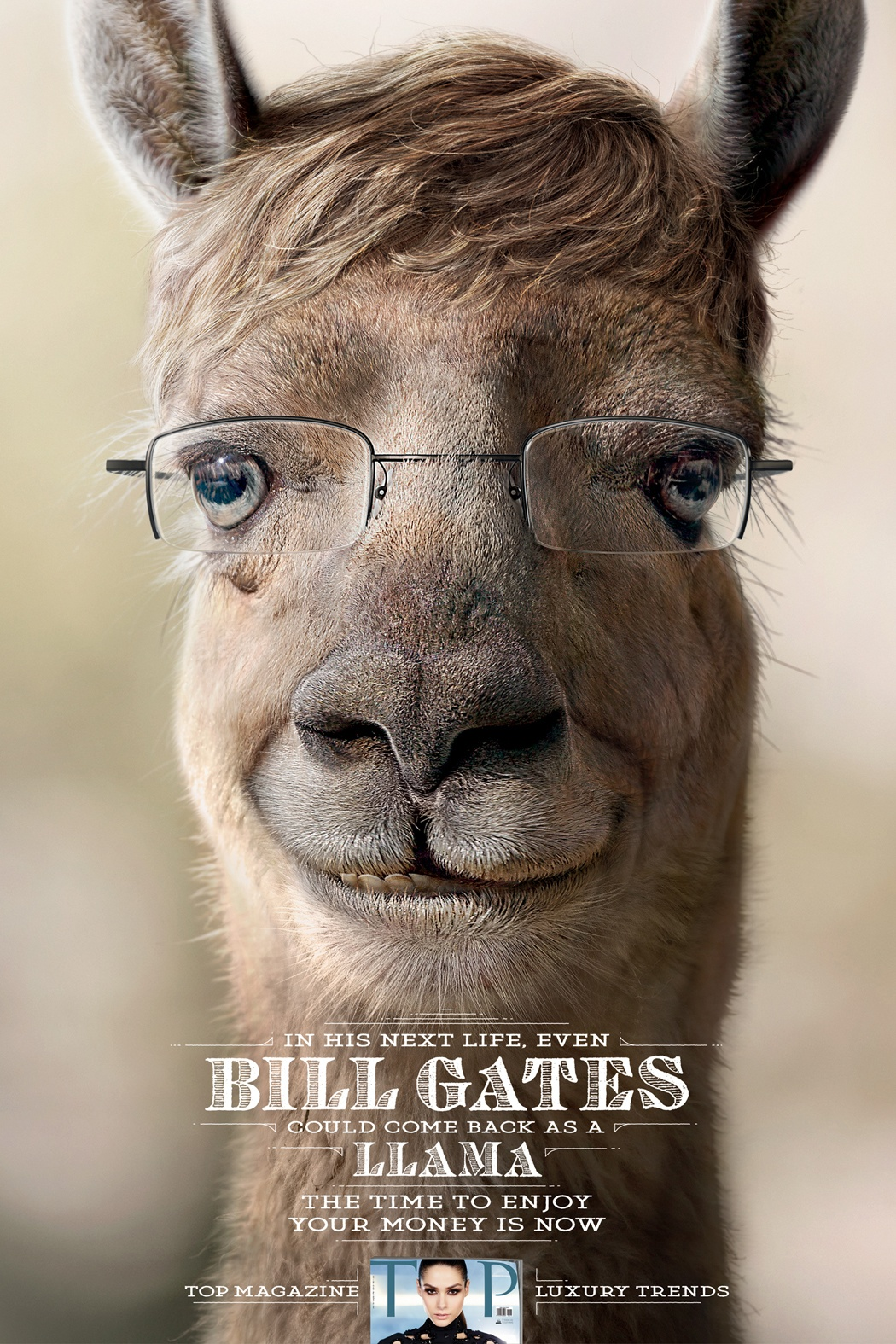 TOP-Magazine-Bill-Gates-Llama