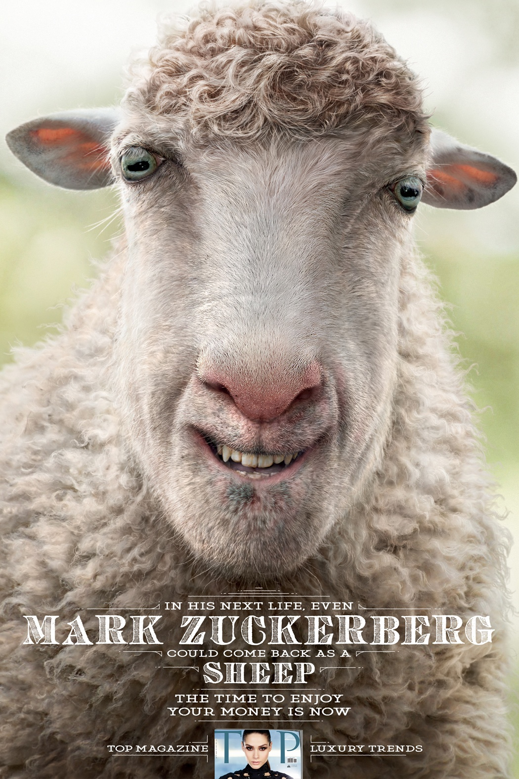 TOP-Magazine-Mark-Zuckerberg-Sheep