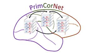 primcornet-270.png