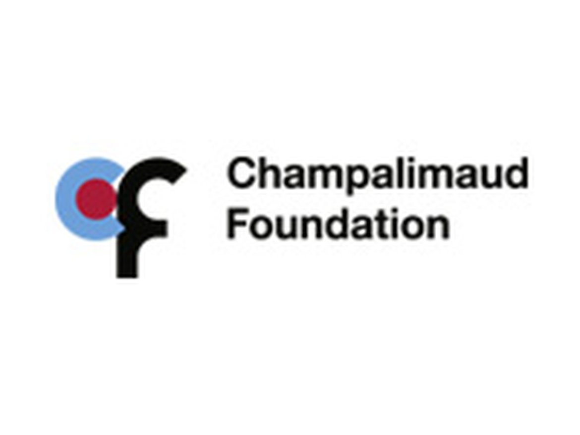 FUNDACAO D. ANNA SOMMER CHAMPALIMAUD E DR. CARLOS MONTEZ CHAMPALIMAUD