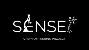 sensei_logo-400.png__400x170_q85_crop_subsampling-2_upscale.png