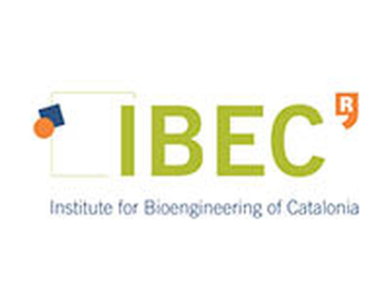 Fundació Institut de Bioingenieria de Catalunya