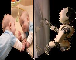 RobotBodySchema