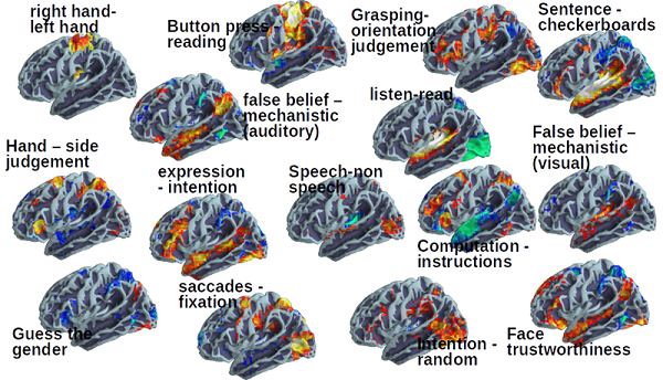 Individual Brain Charting: A high-resolution brain map of cognitive functions