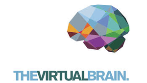 virtual_brain_homepage.png__300x170_q85_crop_subsampling-2_upscale.png