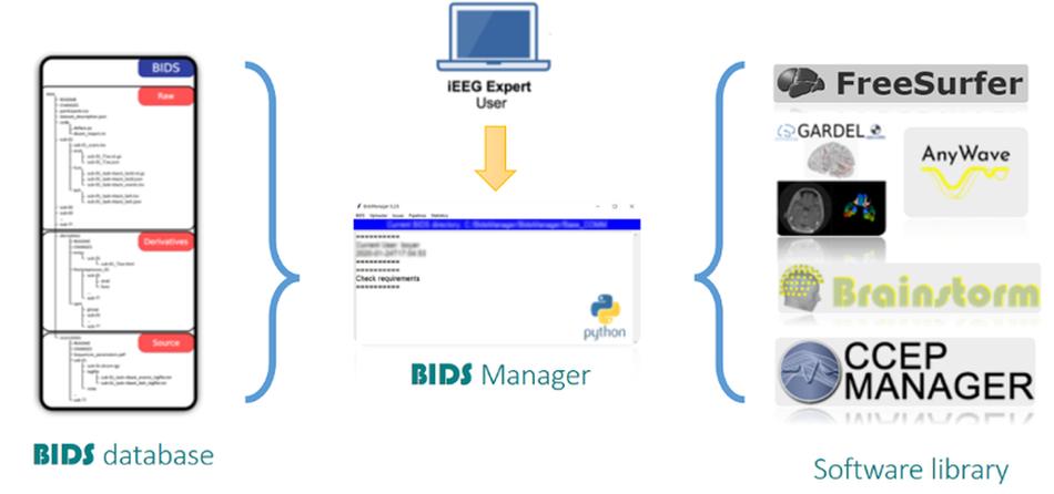 bids-database.png
