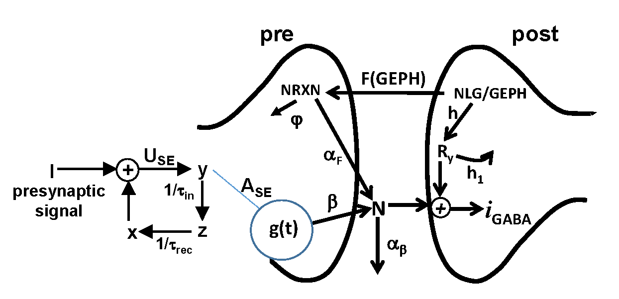 D1.1.1-fig.2.png