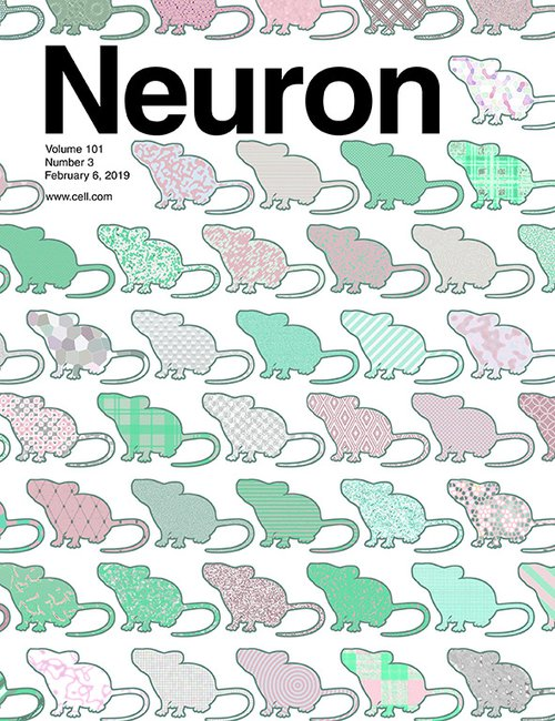 Neuron February 2019 Edition