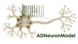 adneuronmodel.jpg__300x170_q85_crop_subsampling-2_upscale.jpg